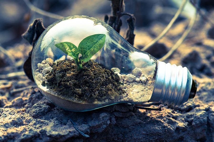 Girardin vert : alliez investissement défiscalisant et impact environnemental positif !